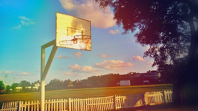 「スラムダンク」桜木花道バスケ部に入った理由がかなり軽かった